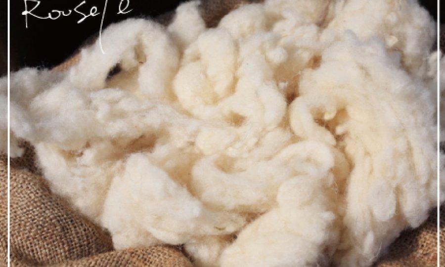 wool素材の奥深さについて